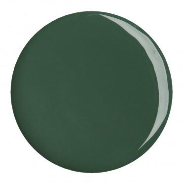 Gel Color Agave Green